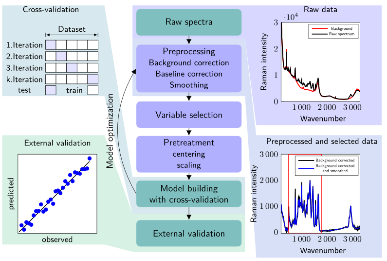 supervised learning plan of Raman Shifts